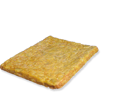 Tortilha Rectangular com cebola